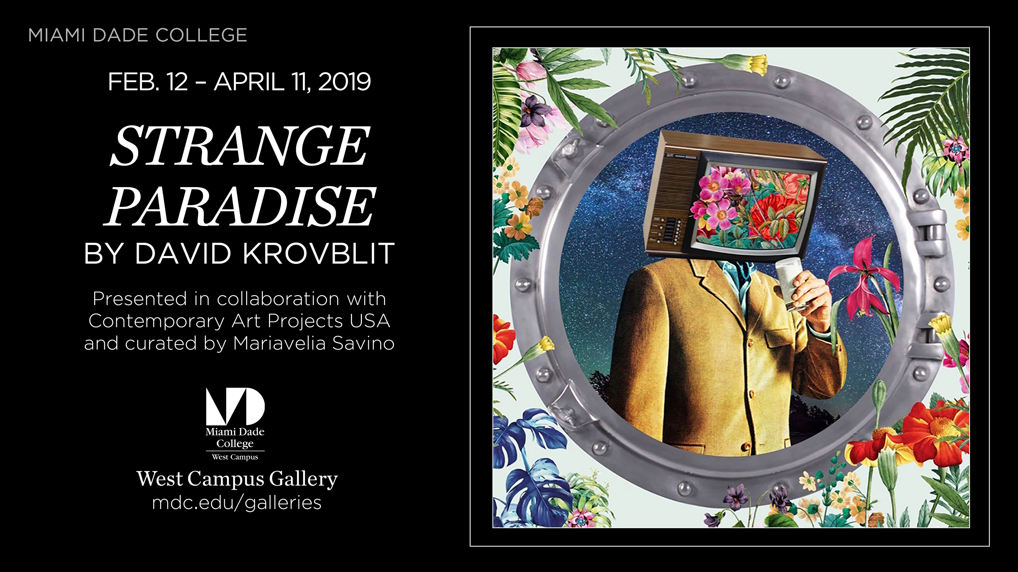 Strange Paradise | David Krovblit | Solo Show | Miami Dade College
